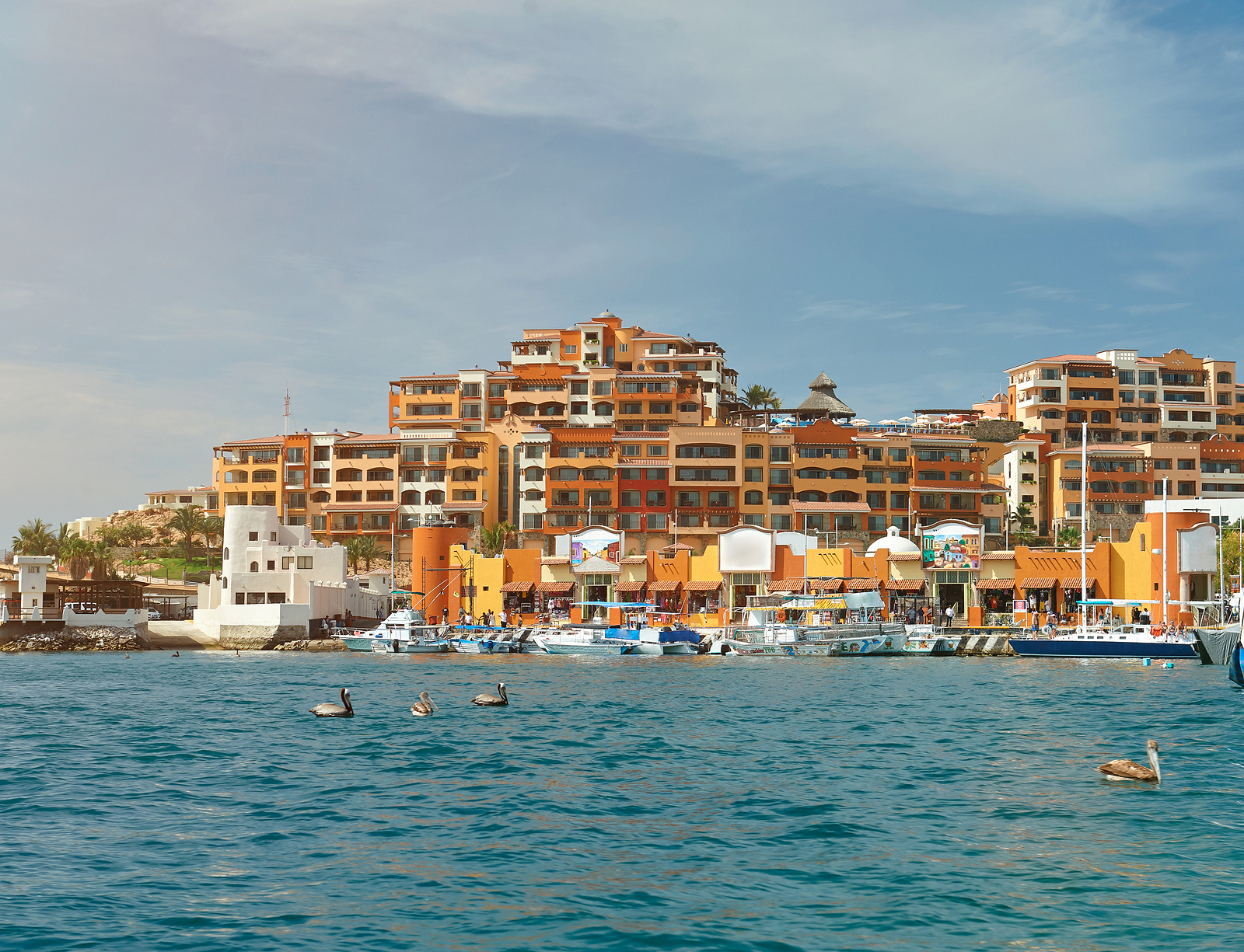 Real Estate in Cabo San Lucas