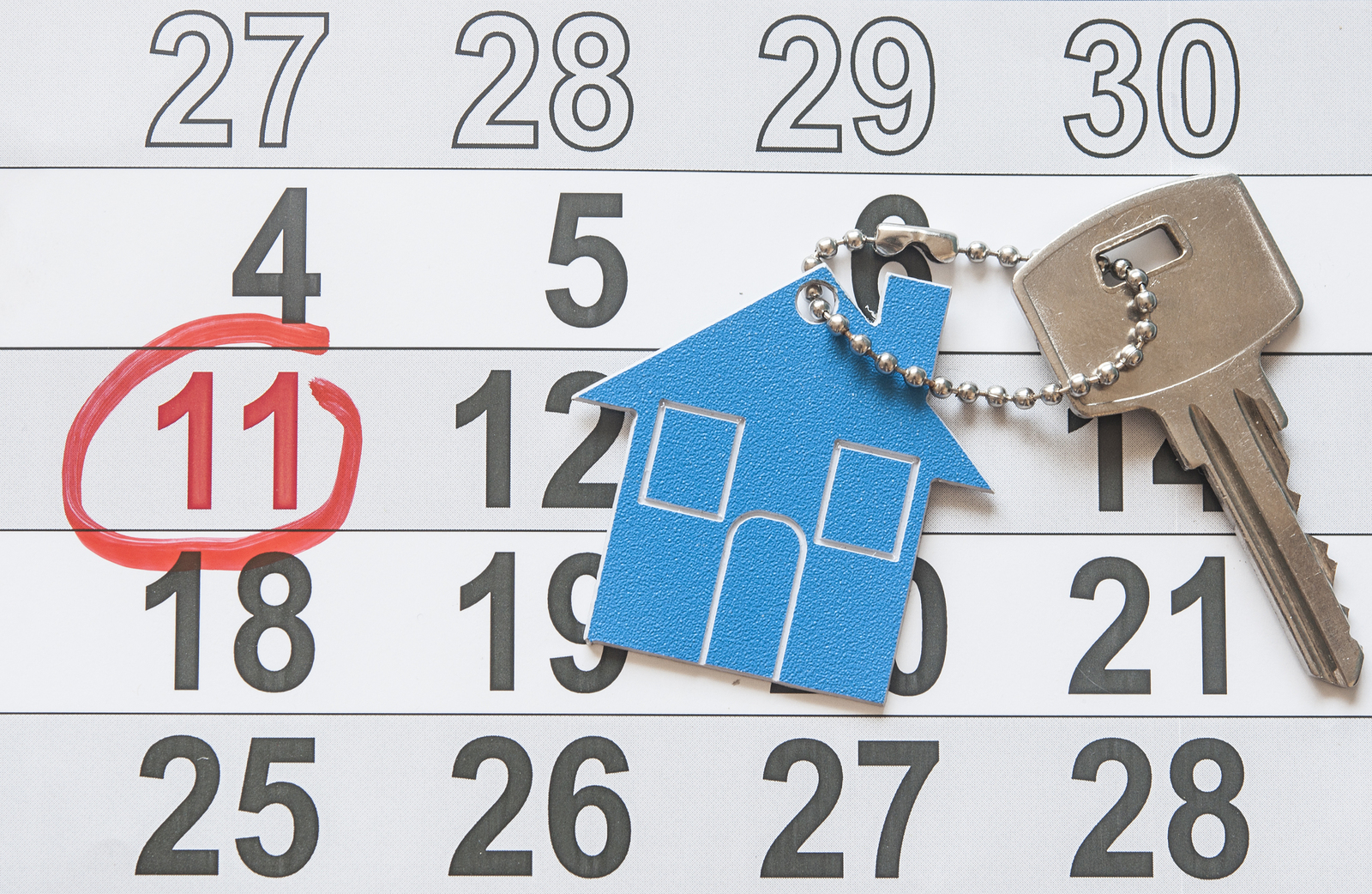 Renting A Property What You Need To Know